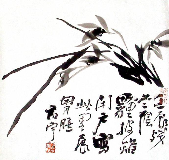 苏高宇兰花.jpg